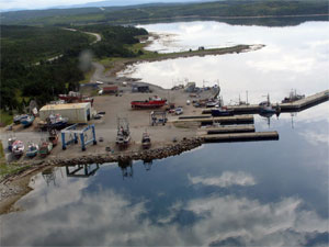 Aerial photo of Port Saunders (Photo by Jerry Lavers)