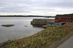 Waterfront stage in Port Saunders